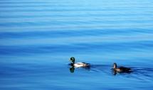 Lake Uluabat, Bursa, Turkey